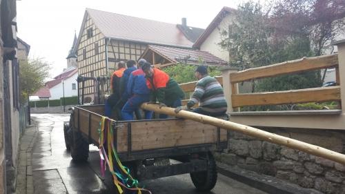Transport des Maibaums 2017